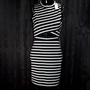 NWT Express Black and White Striped Bodycon Dress